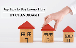 Key-Tips-to-Buy-Luxury-Flats-in-Chandigarh-(Small)